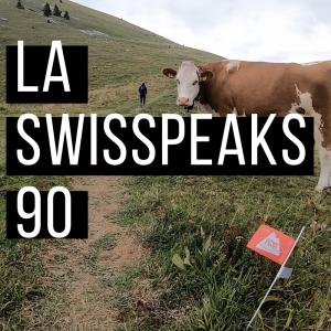 SwissPeaks 90